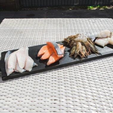 Fish Family